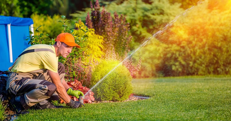 a man kneeling down on a green lawn adjusting a sprinkler head during a sprinkler startup in Colorado Springs